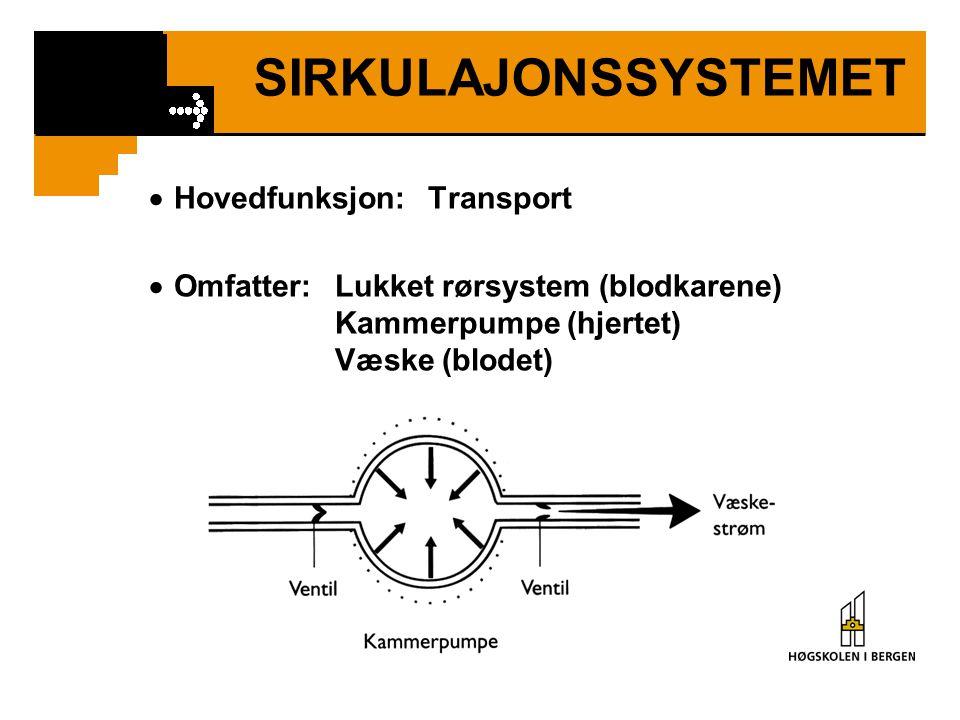 SIRKULAJONSSYSTEMET  Hovedfunksjon:Transport  Omfatter:Lukket rørsystem (blodkarene) Kammerpumpe (hjertet) Væske (blodet)