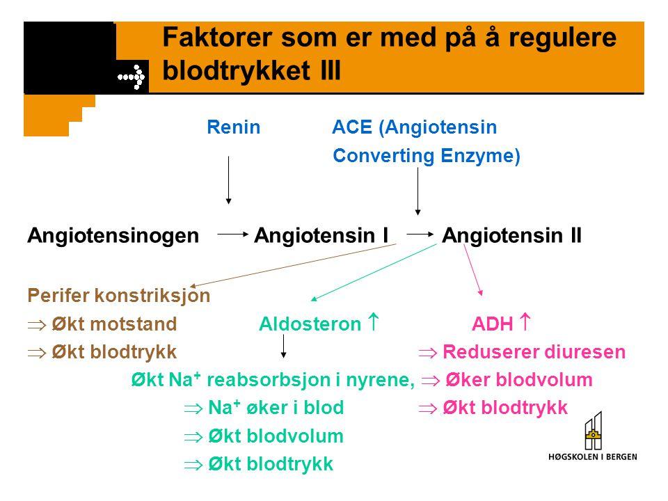 Faktorer som er med på å regulere blodtrykket III Renin ACE (Angiotensin Converting Enzyme) Angiotensinogen Angiotensin I Angiotensin II Perifer konst