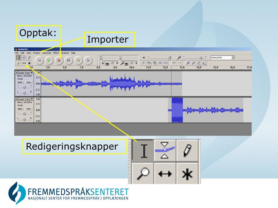 Importer Opptak: Redigeringsknapper