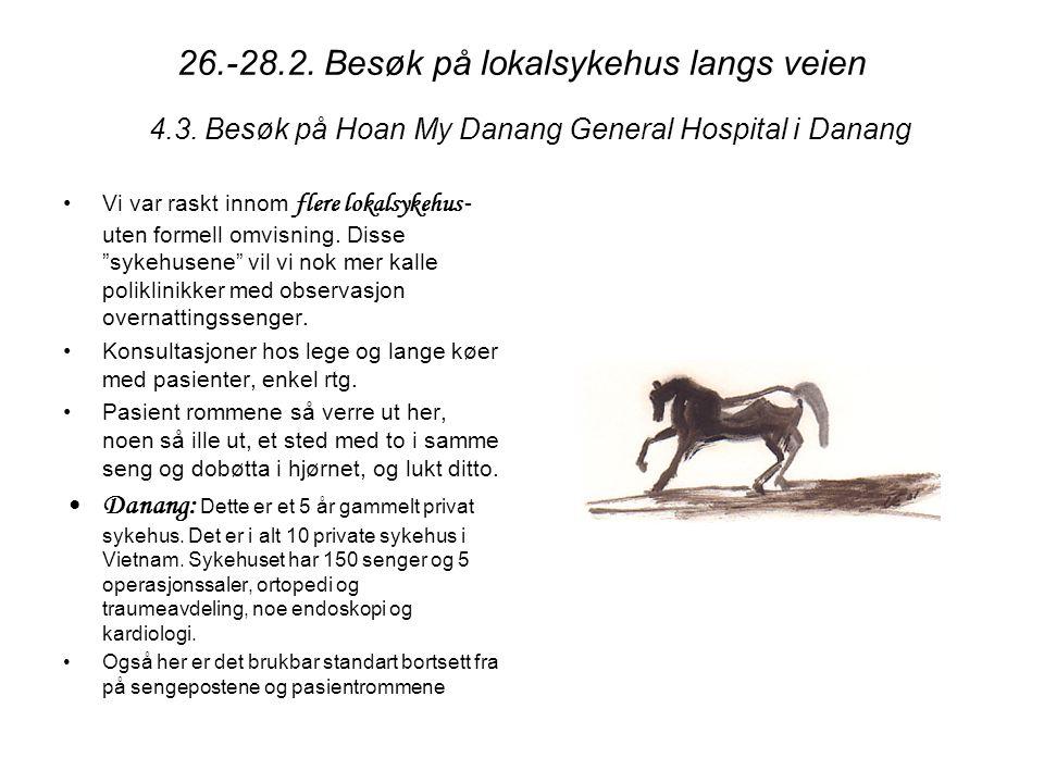 6.3.07: Besøk på barnehjem for foreldreløse og funksjonshemmede barn i Hoi An.