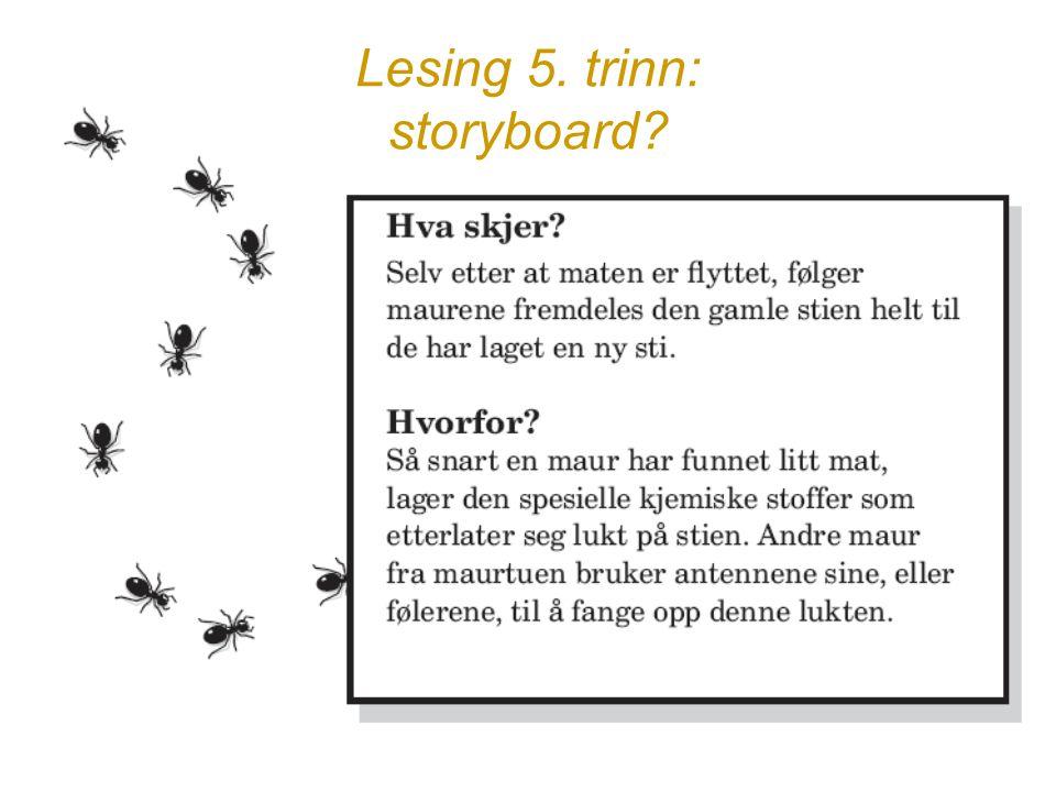 Lesing 5. trinn: storyboard?