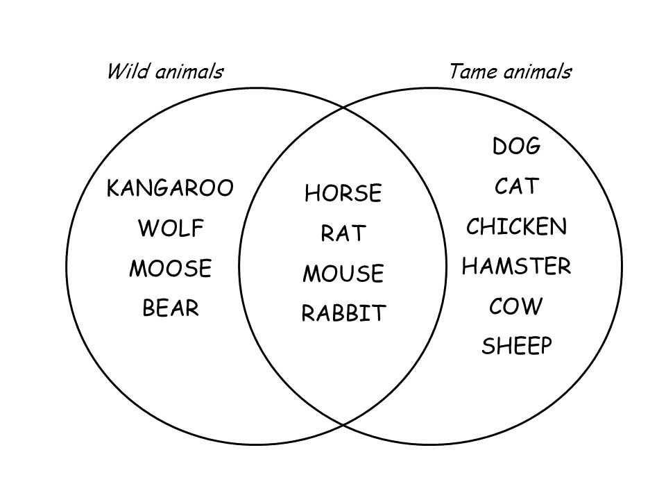 KANGAROO WOLF MOOSE BEAR HORSE RAT MOUSE RABBIT DOG CAT CHICKEN HAMSTER COW SHEEP Wild animalsTame animals