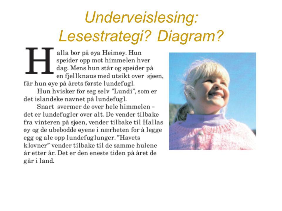 Underveislesing: Lesestrategi? Diagram?