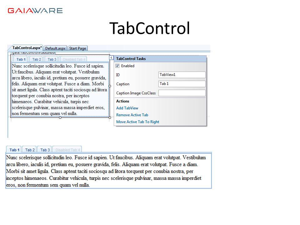 TabControl