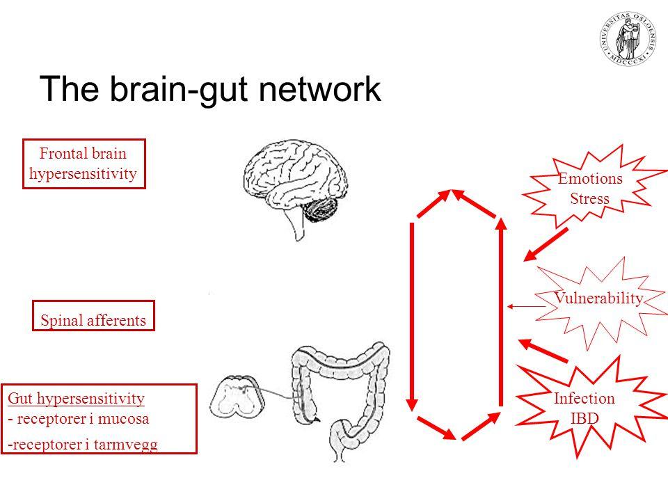 The brain-gut network Emotions Stress Gut hypersensitivity - receptorer i mucosa -receptorer i tarmvegg Spinal afferents Frontal brain hypersensitivit