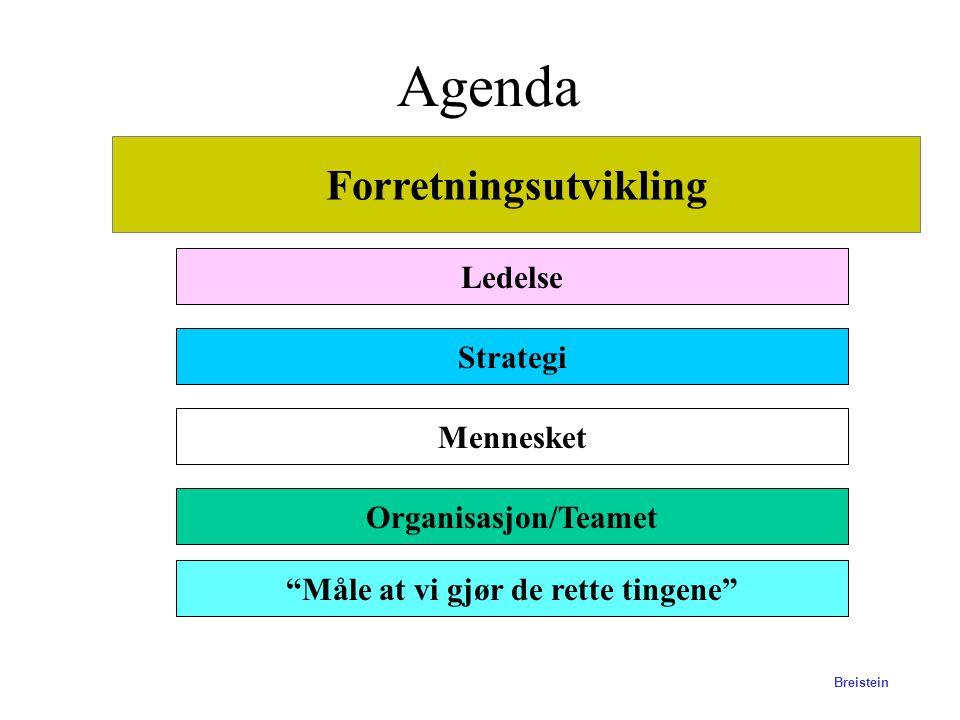 BI-Stavanger Forretningsutvikling Bernt Arne Breistein Hvordan får du forretningsideen til å fungere?