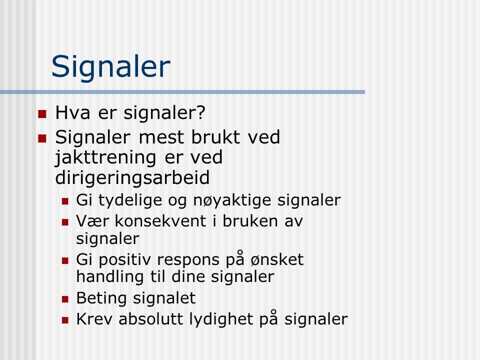 Signaler  Hva er signaler?  Signaler mest brukt ved jakttrening er ved dirigeringsarbeid  Gi tydelige og nøyaktige signaler  Vær konsekvent i bruk