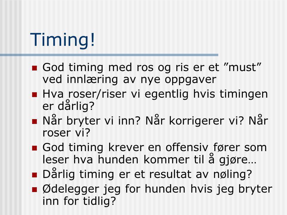 """Timing!  God timing med ros og ris er et """"must"""" ved innlæring av nye oppgaver  Hva roser/riser vi egentlig hvis timingen er dårlig?  Når bryter vi"""