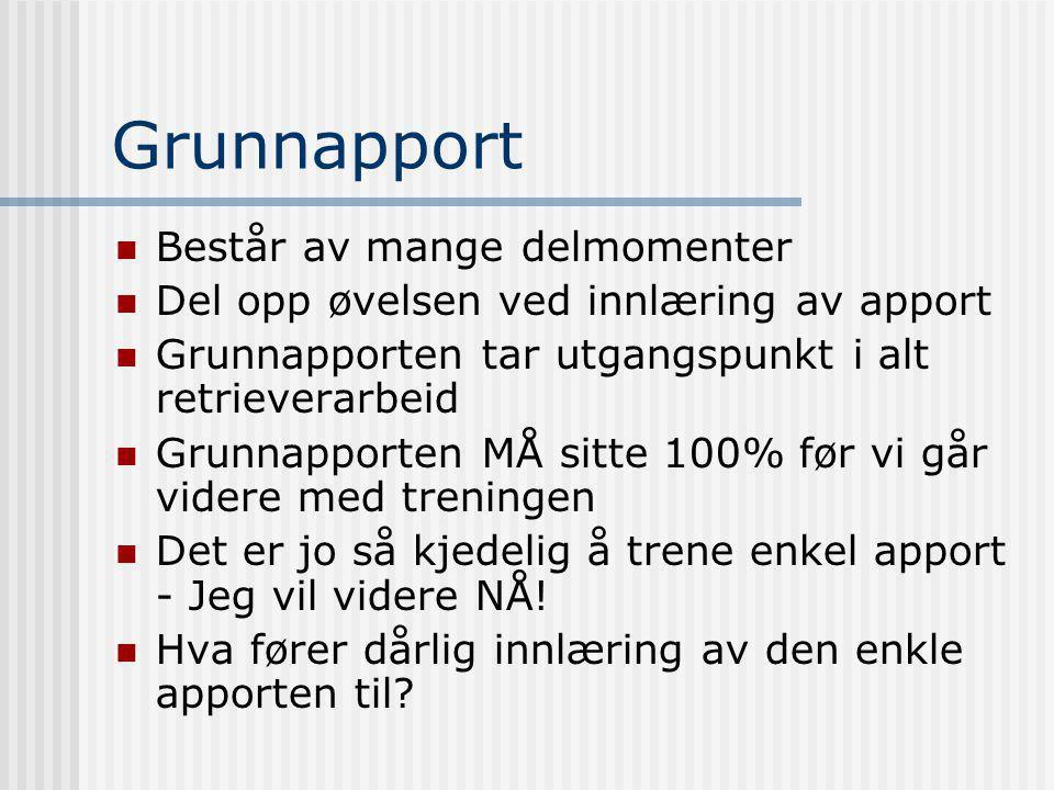 Grunnapport  Består av mange delmomenter  Del opp øvelsen ved innlæring av apport  Grunnapporten tar utgangspunkt i alt retrieverarbeid  Grunnappo