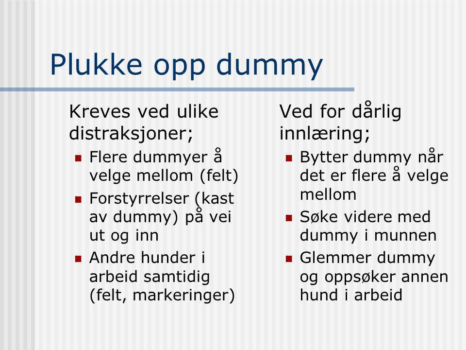 Plukke opp dummy Kreves ved ulike distraksjoner;  Flere dummyer å velge mellom (felt)  Forstyrrelser (kast av dummy) på vei ut og inn  Andre hunder