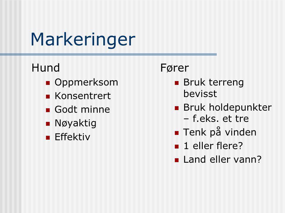 Markeringer Hund  Oppmerksom  Konsentrert  Godt minne  Nøyaktig  Effektiv Fører  Bruk terreng bevisst  Bruk holdepunkter – f.eks.
