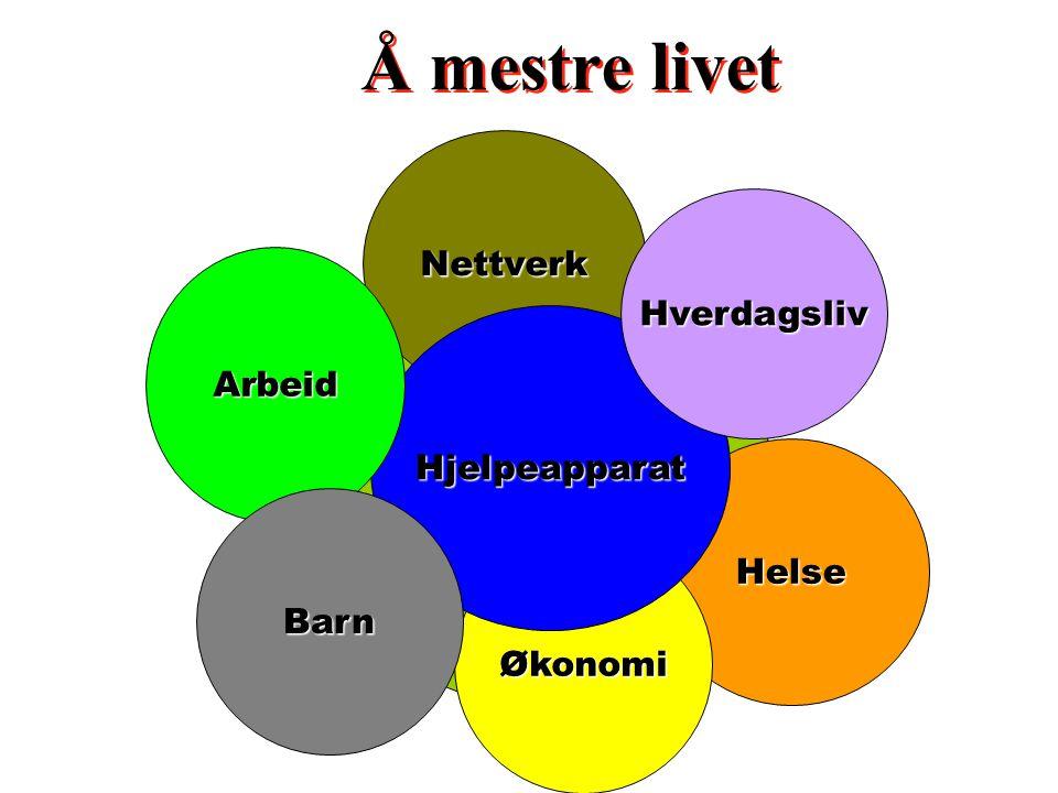 Forhold til partner - Samliv Å mestre livet Helse Økonomi Nettverk Hjelpeapparat Hverdagsliv Arbeid Barn