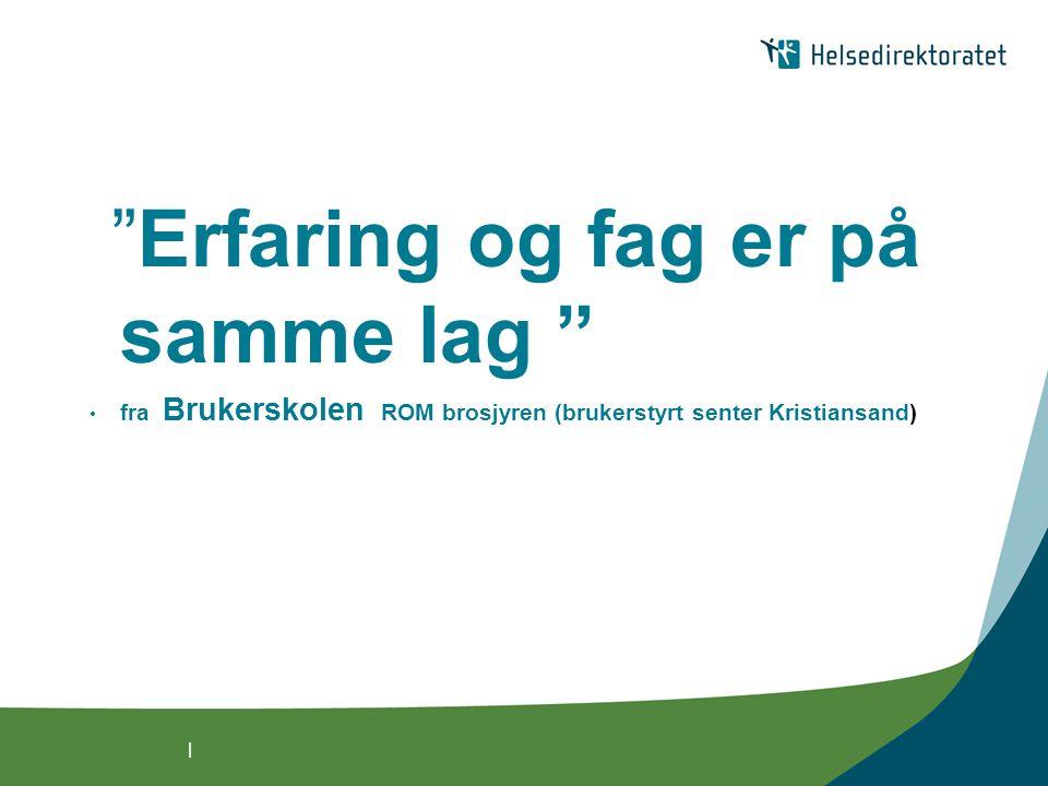 | Erfaring og fag er på samme lag • fra Brukerskolen ROM brosjyren (brukerstyrt senter Kristiansand)