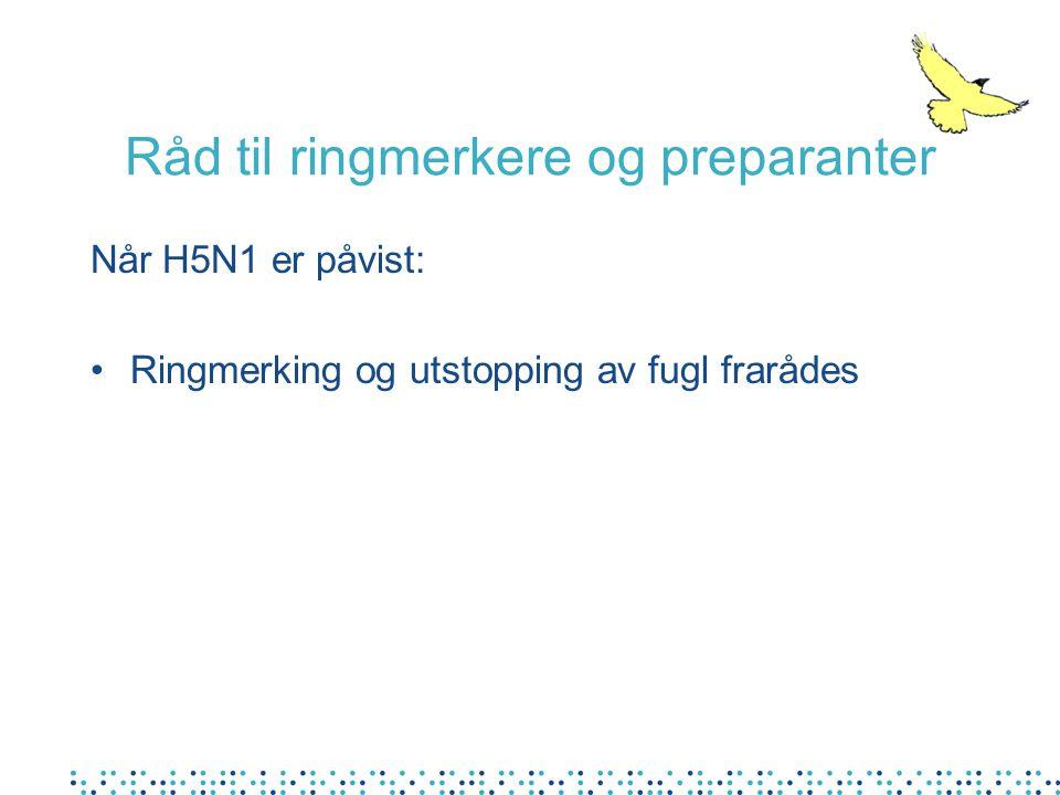 Når H5N1 er påvist: •Ringmerking og utstopping av fugl frarådes Råd til ringmerkere og preparanter