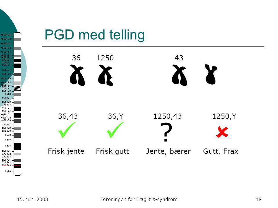15. juni 2003Foreningen for Fragilt X-syndrom18 PGD med telling  36125043 36,4336,Y1250,431250,Y  ?  Frisk jenteFrisk guttJente, bærerGutt, Fra