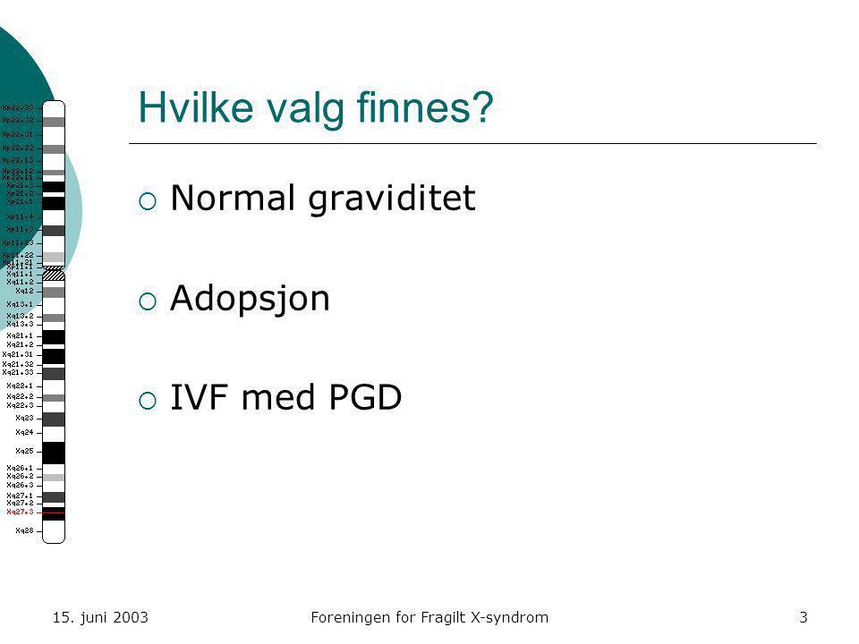 15. juni 2003Foreningen for Fragilt X-syndrom3 Hvilke valg finnes?  Normal graviditet  Adopsjon  IVF med PGD