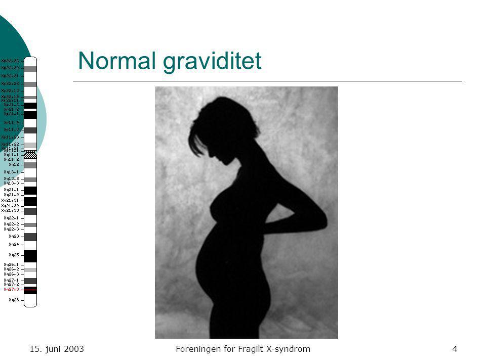 15. juni 2003Foreningen for Fragilt X-syndrom4 Normal graviditet