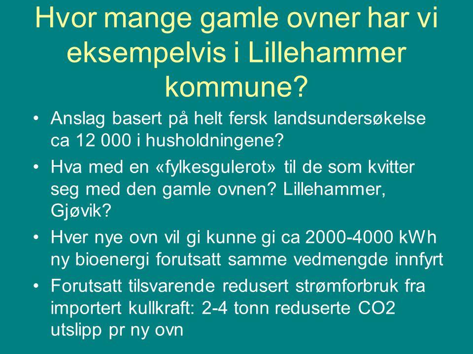 Hvor mange gamle ovner har vi eksempelvis i Lillehammer kommune.