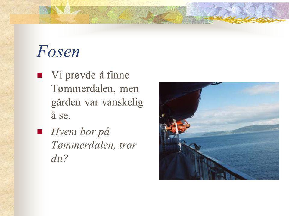 Fosen  Vi prøvde å finne Tømmerdalen, men gården var vanskelig å se.