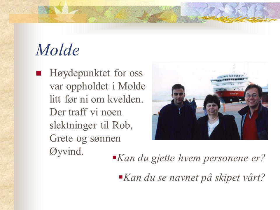 Ålesund  Ålesund fikk vi ikke se fordi vi var trøtte og gikk til sengs før vi stoppet der.