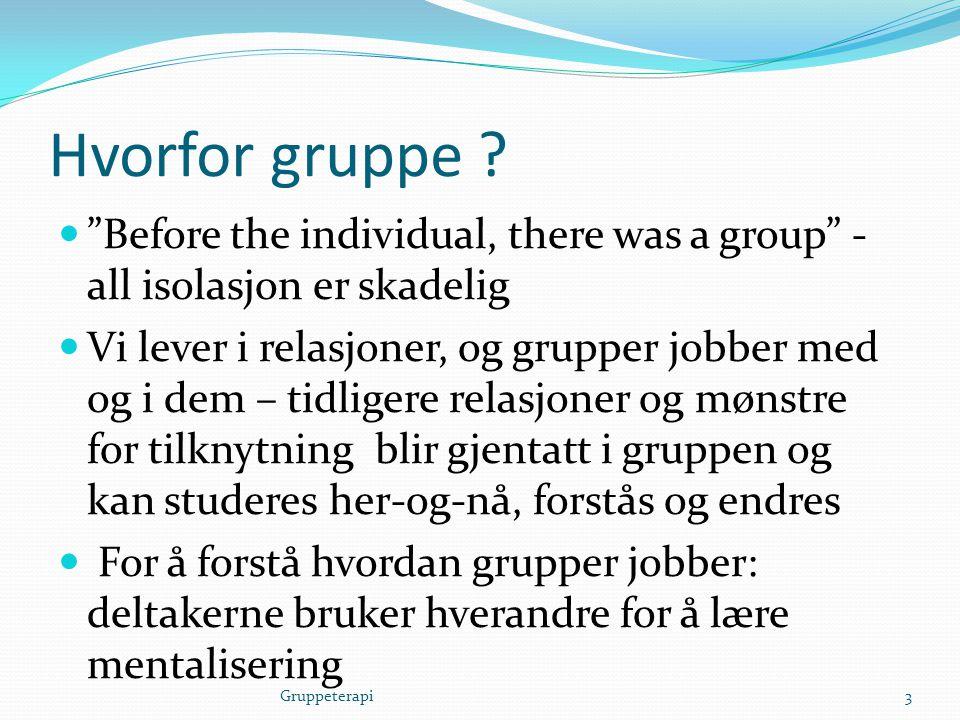 """Hvorfor gruppe ?  """"Before the individual, there was a group"""" - all isolasjon er skadelig  Vi lever i relasjoner, og grupper jobber med og i dem – ti"""