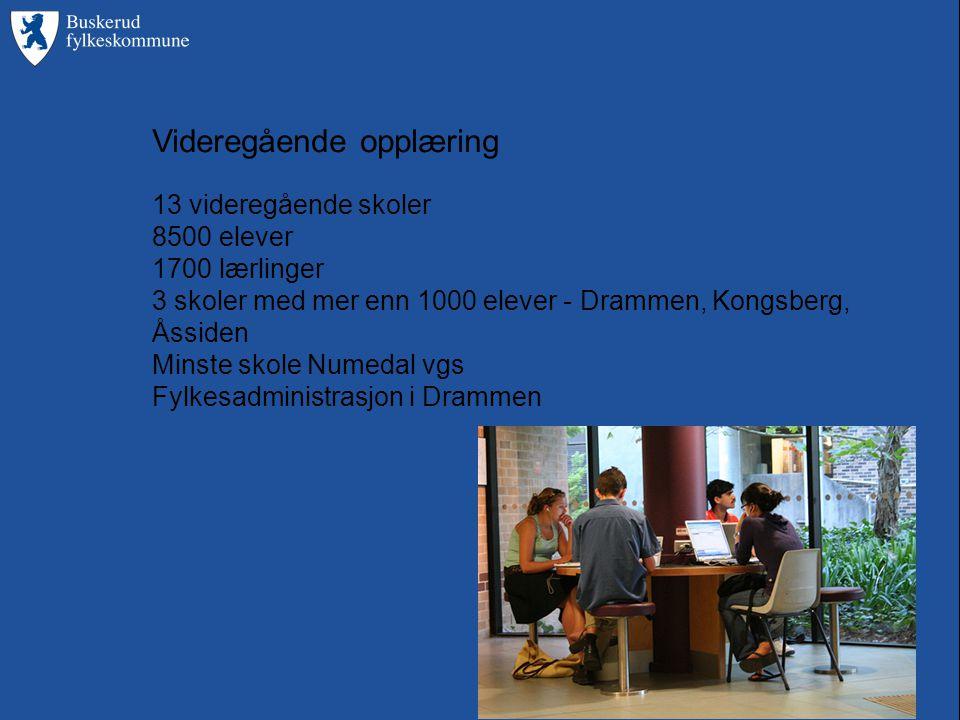 Videregående opplæring 13 videregående skoler 8500 elever 1700 lærlinger 3 skoler med mer enn 1000 elever - Drammen, Kongsberg, Åssiden Minste skole Numedal vgs Fylkesadministrasjon i Drammen