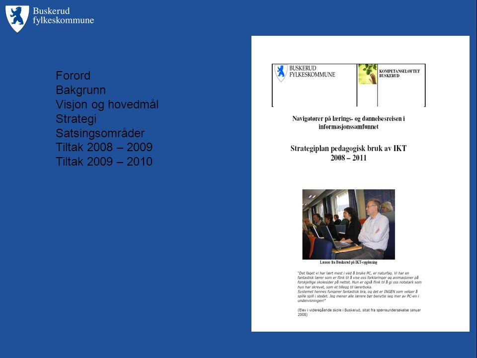 Forord Bakgrunn Visjon og hovedmål Strategi Satsingsområder Tiltak 2008 – 2009 Tiltak 2009 – 2010