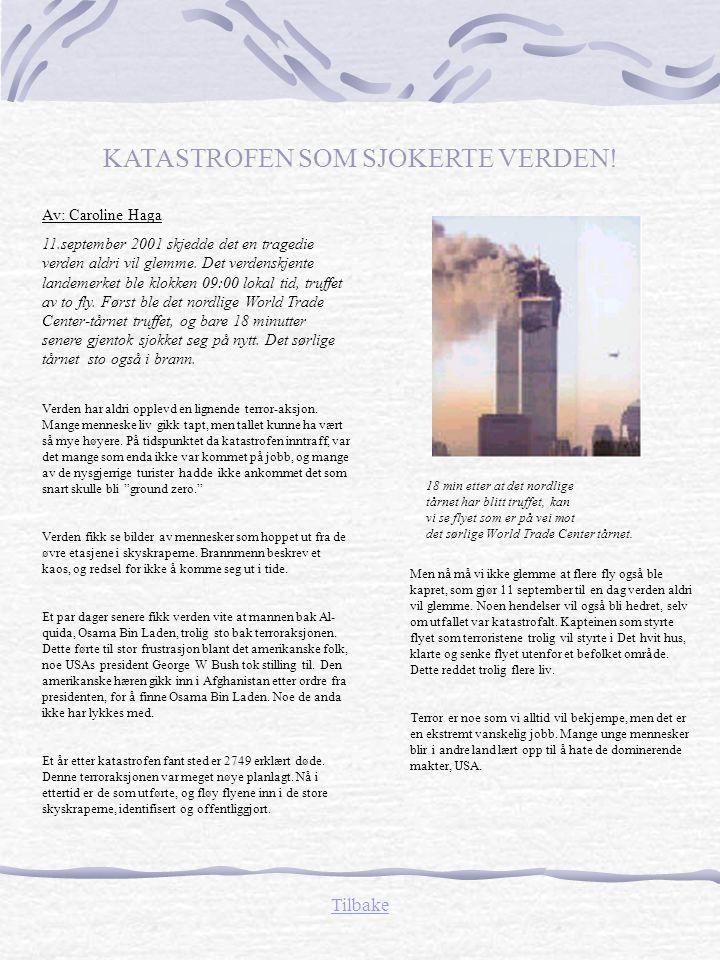 Av: Martin Thorsen: Omkring 500 år e.Kr bygde bønder og fiskere lagerplass til varene sine, innerst i Bjørvika, som senere ble til små hus.