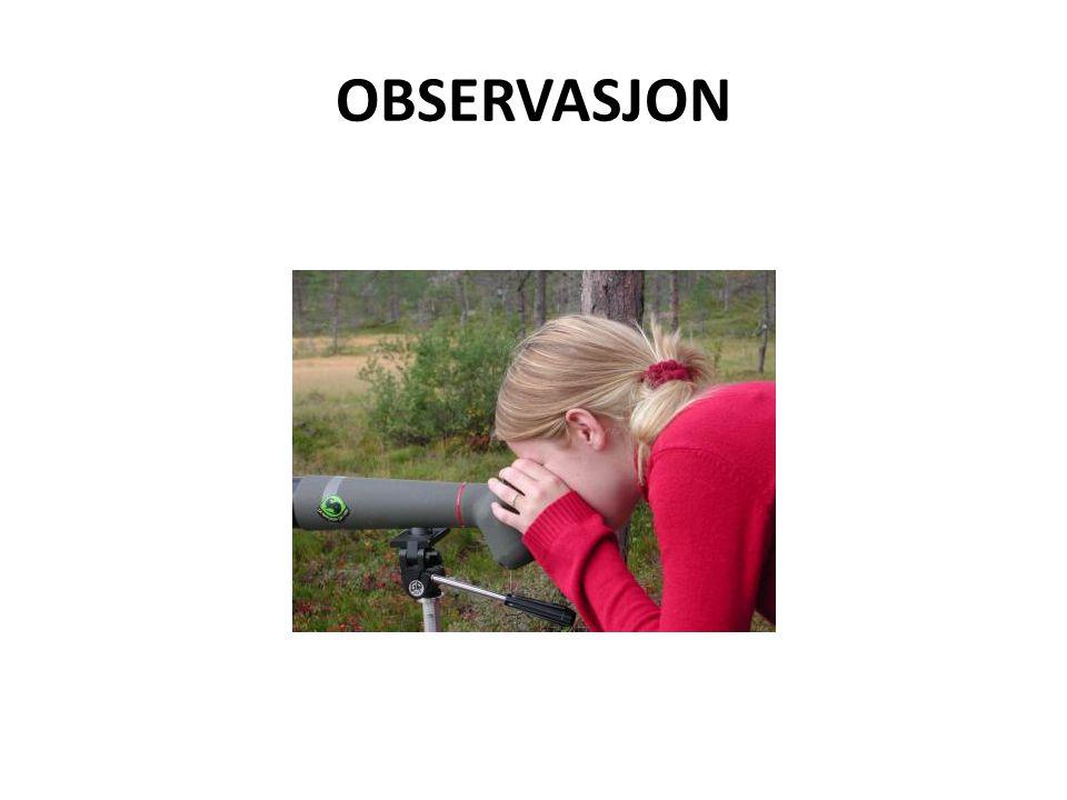 HUSK: Observasjonsmetoden må tilpasses formålet. Viktig å skille mellom OBSERVASJON og TOLKNING