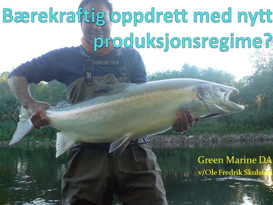 Green Marine DA v/Ole Fredrik Skulstad