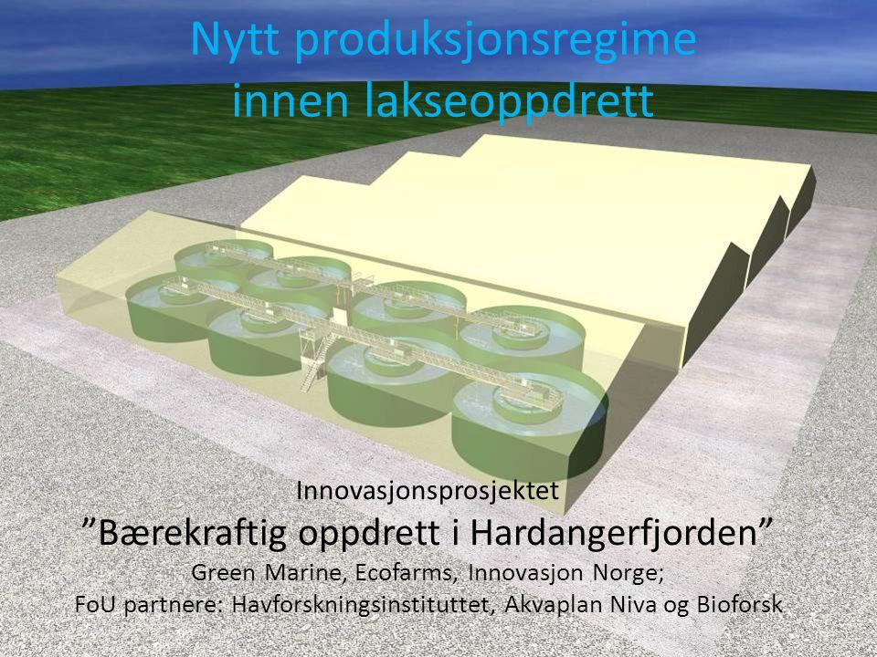 Innovasjonsprosjektet Bærekraftig oppdrett i Hardanger Green Marin DA, Innovasjon Norge, Ecofarms, Næringsaktør?, Havforskningsinstituttet, Akvaplan N