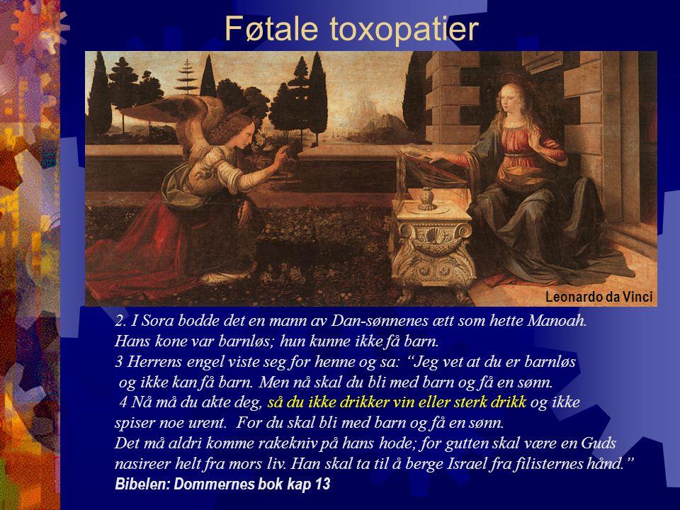 Føtale toxopatier 2.I Sora bodde det en mann av Dan-sønnenes ætt som hette Manoah.
