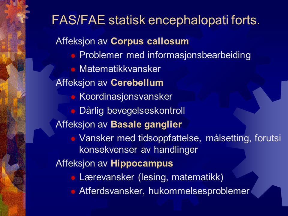 FAS/FAE statisk encephalopati forts.