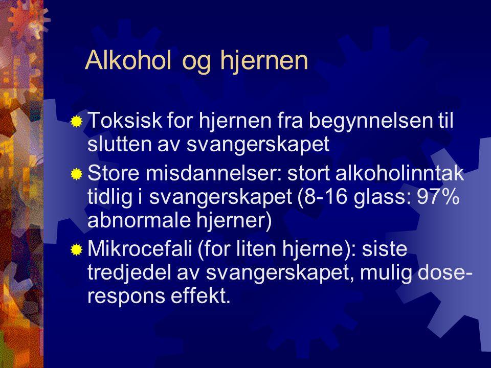 Alkohol og hjernen  Toksisk for hjernen fra begynnelsen til slutten av svangerskapet  Store misdannelser: stort alkoholinntak tidlig i svangerskapet (8-16 glass: 97% abnormale hjerner)  Mikrocefali (for liten hjerne): siste tredjedel av svangerskapet, mulig dose- respons effekt.