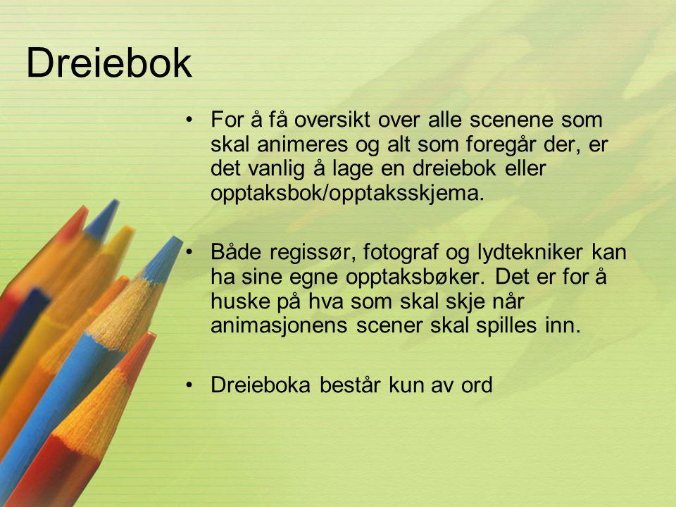 Dreiebok •For å få oversikt over alle scenene som skal animeres og alt som foregår der, er det vanlig å lage en dreiebok eller opptaksbok/opptaksskjem