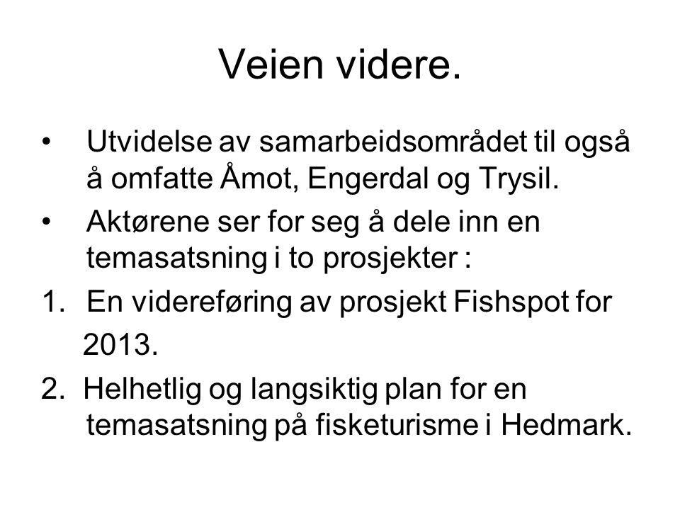 Veien videre. •Utvidelse av samarbeidsområdet til også å omfatte Åmot, Engerdal og Trysil.