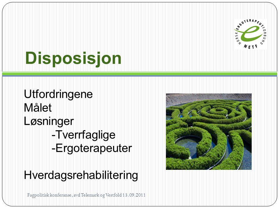 Løsninger - Ergoterapeuter Fredericiamodellen 1 visitator (2 x ½) 1 distriktsleder 1 sykepleier 1 fysioterapeut 2 ergoterapeut 12 hjelpepleiere/omsorgsarbeidere Fagpolitisk konferanse, avd Telemark.