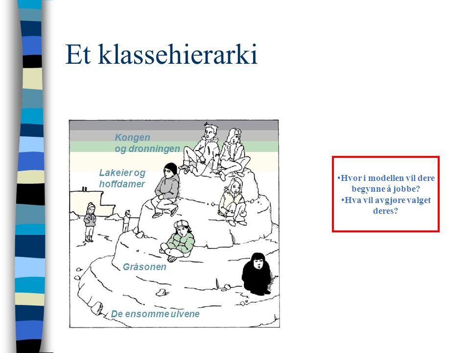 Et klassehierarki Kongen og dronningen Lakeier og hoffdamer Gråsonen De ensomme ulvene •Hvor i modellen vil dere begynne å jobbe? •Hva vil avgjøre val