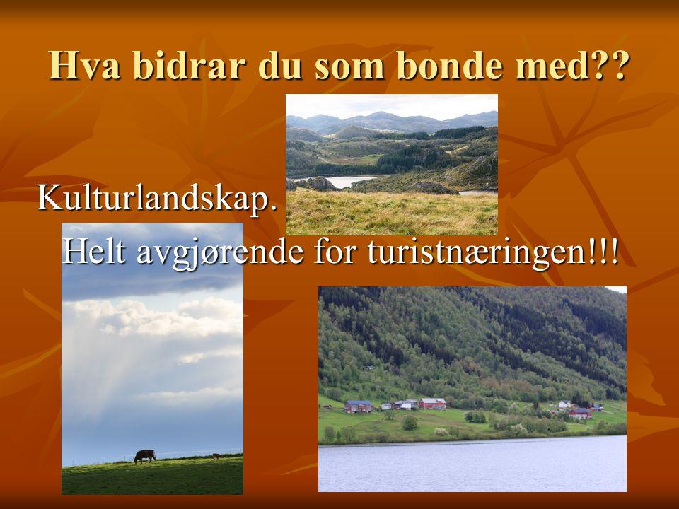 Kulturlandskap. Helt avgjørende for turistnæringen!!!