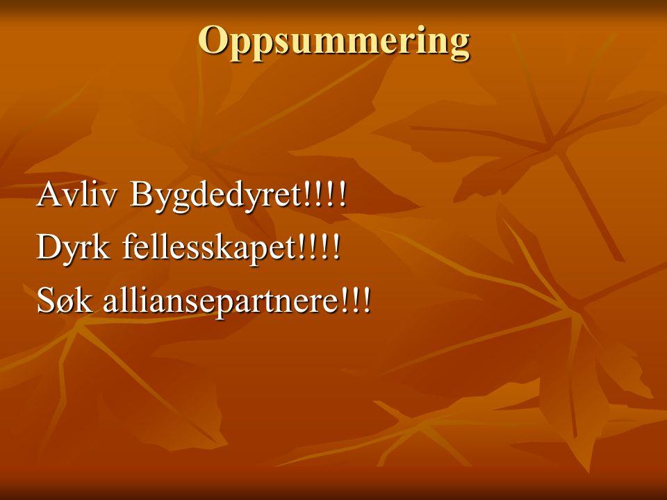 Oppsummering Avliv Bygdedyret!!!! Dyrk fellesskapet!!!! Søk alliansepartnere!!!