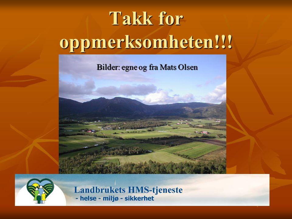 Takk for oppmerksomheten!!! Bilder: egne og fra Mats Olsen