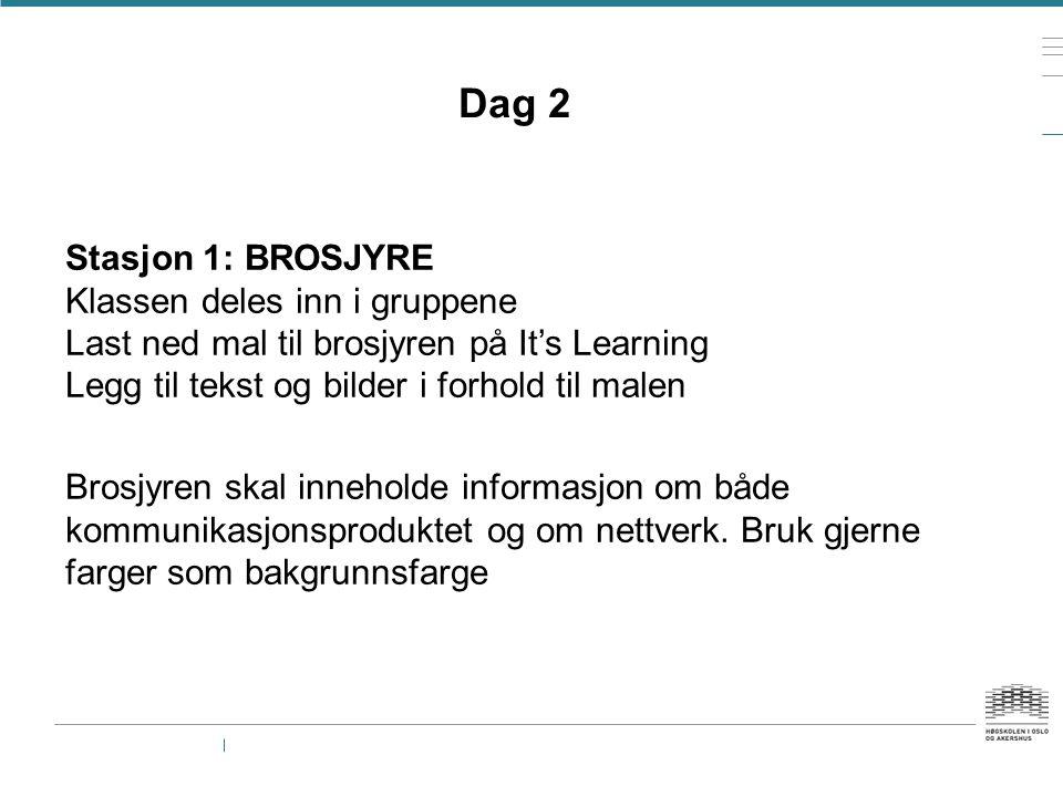 Dag 2 Stasjon 1: BROSJYRE Klassen deles inn i gruppene Last ned mal til brosjyren på It's Learning Legg til tekst og bilder i forhold til malen Brosjy
