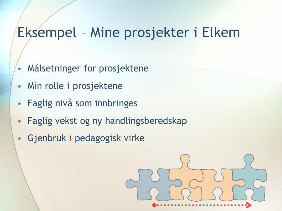 Eksempel – Mine prosjekter i Elkem •Målsetninger for prosjektene •Min rolle i prosjektene •Faglig nivå som innbringes •Faglig vekst og ny handlingsberedskap •Gjenbruk i pedagogisk virke
