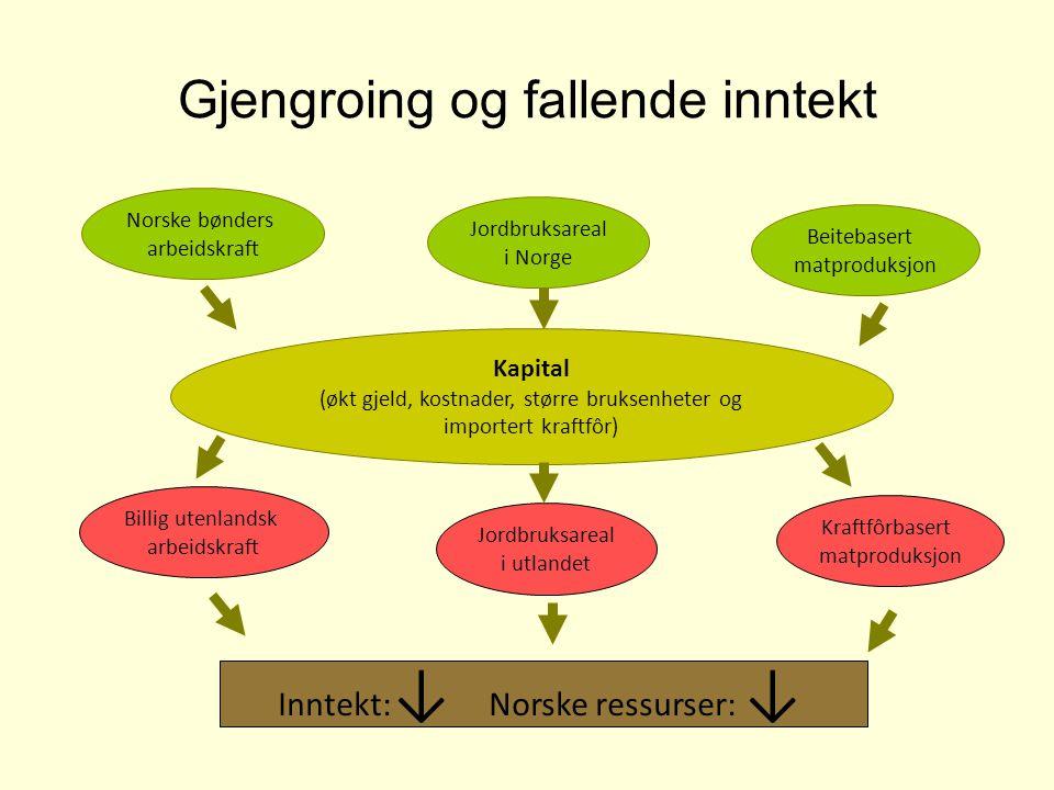 Gjengroing og fallende inntekt Norske bønders arbeidskraft Billig utenlandsk arbeidskraft Jordbruksareal i Norge Jordbruksareal i utlandet Beitebasert