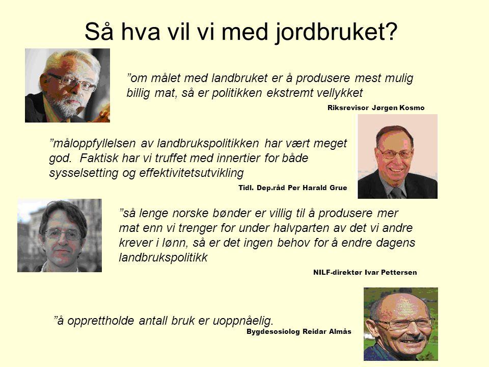 """Så hva vil vi med jordbruket? """"om målet med landbruket er å produsere mest mulig billig mat, så er politikken ekstremt vellykket Riksrevisor Jørgen Ko"""