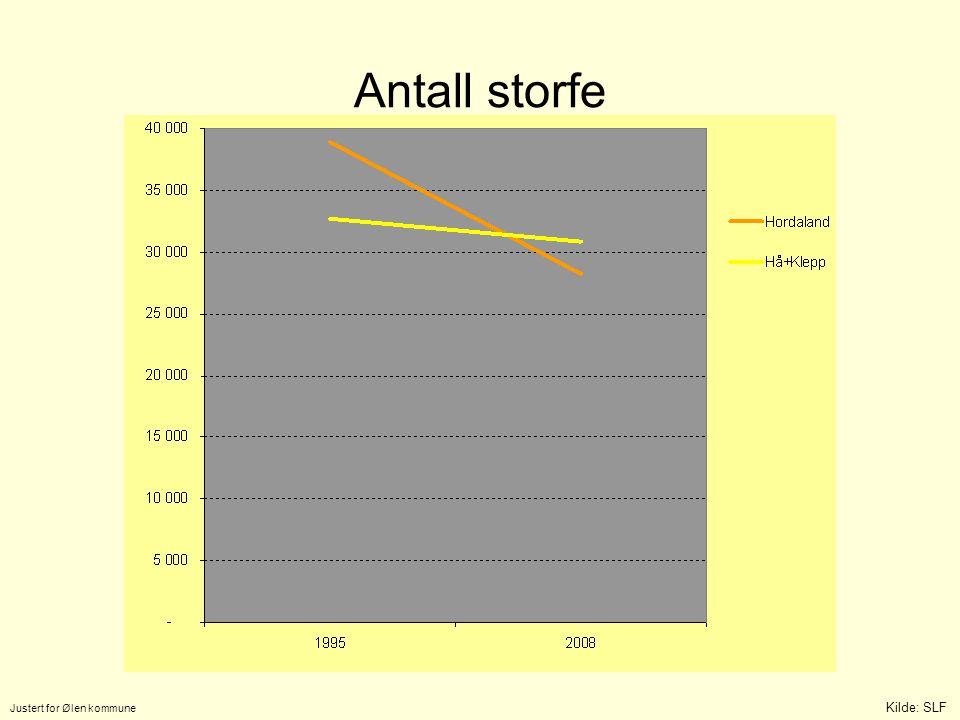 Antall storfe Justert for Ølen kommune Kilde: SLF