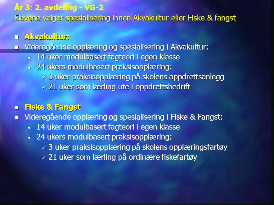 År 3: 2. avdeling - VG-2 Elevene velger spesialisering innen Akvakultur eller Fiske & fangst  Akvakultur:  Videregående opplæring og spesialisering