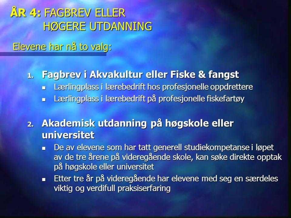 ÅR 4: FAGBREV ELLER HØGERE UTDANNING Elevene har nå to valg: 1. Fagbrev i Akvakultur eller Fiske & fangst  Lærlingplass i lærebedrift hos profesjonel