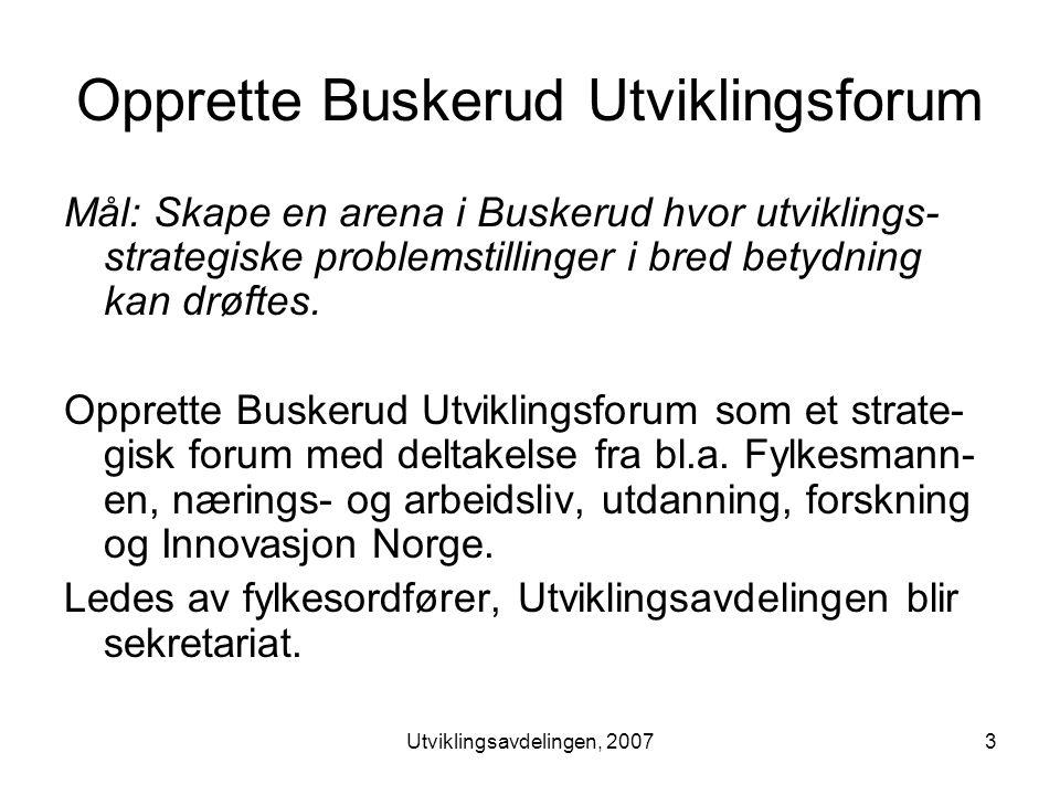 Utviklingsavdelingen, 20073 Opprette Buskerud Utviklingsforum Mål: Skape en arena i Buskerud hvor utviklings- strategiske problemstillinger i bred betydning kan drøftes.