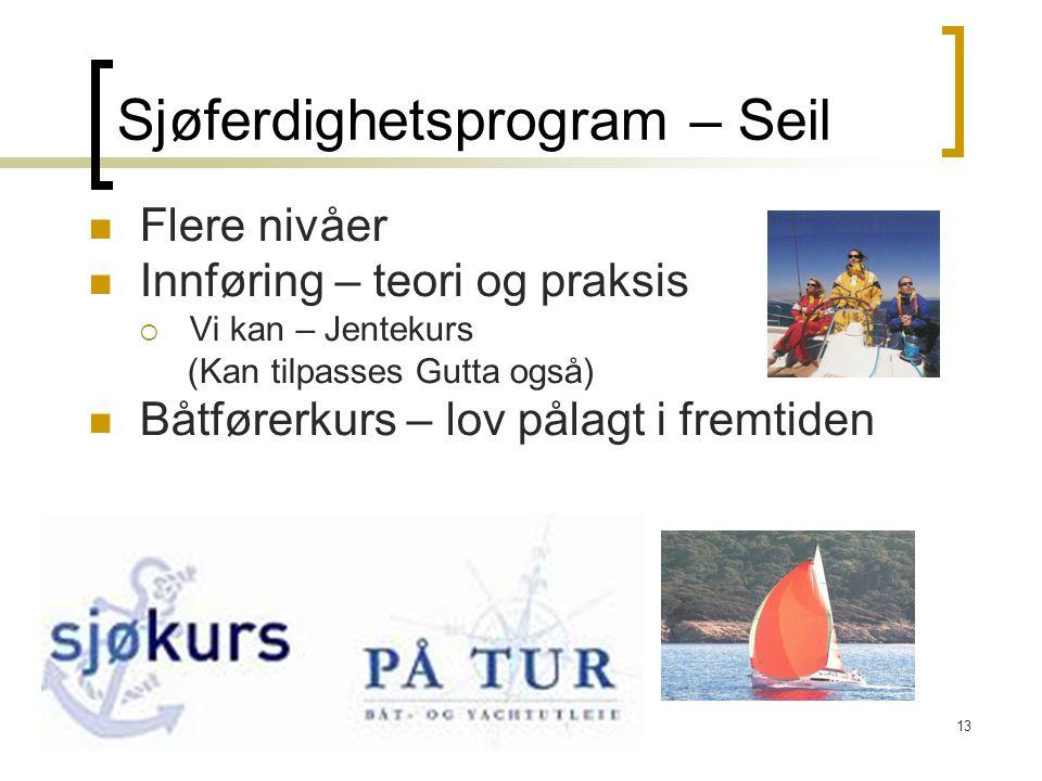 13 Sjøferdighetsprogram – Seil  Flere nivåer  Innføring – teori og praksis  Vi kan – Jentekurs (Kan tilpasses Gutta også)  Båtførerkurs – lov påla